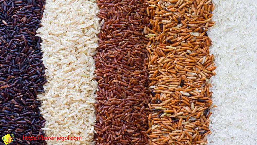 انواع-بهترین-برنج-ایرانی-2