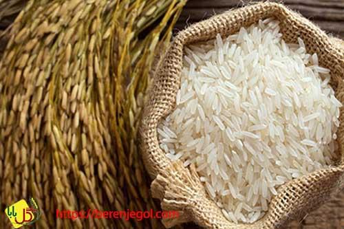برنج-طارم-ایرانی-2