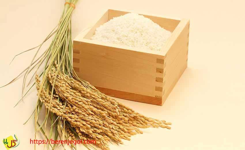 برنج-طارم-ایرانی-3