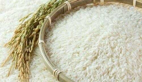 برنج-فریدونکنار