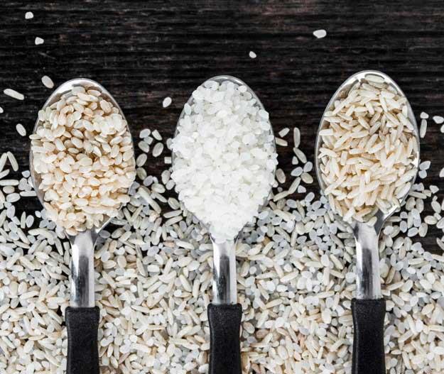 برنج-کشت-دوم-10