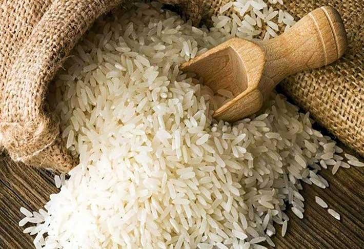 برنج-کشت-دوم-11