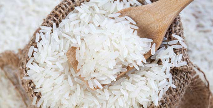 معرفی-برنج-شمال