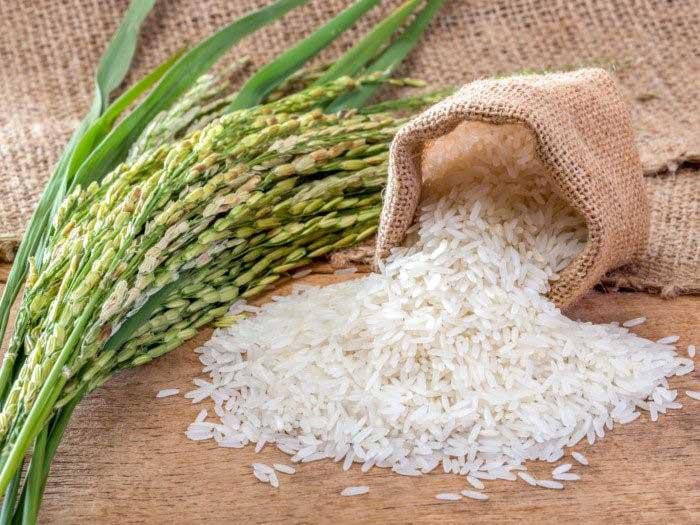 خرید-عمده-برنج-15
