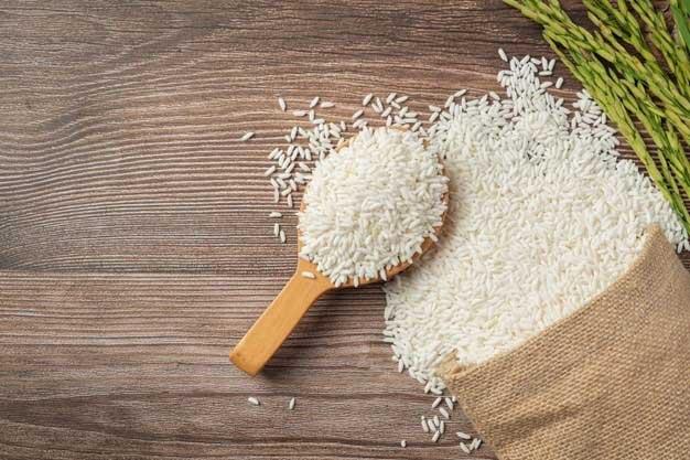 خرید-مستقیم-برنج-از-شمال-10
