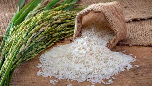 معتبرترین-مرکز-فروش-برنج-ندا