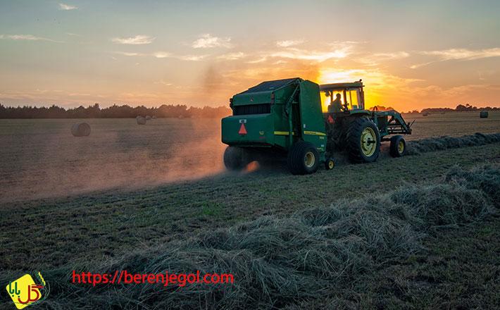 نکاتی-درباره-صادرات-برنج